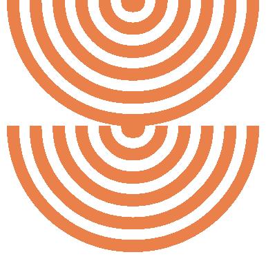 icon_conexiuni